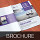 Corporate Bifold & Trifold Brochure v3 - GraphicRiver Item for Sale