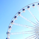 Wheel - VideoHive Item for Sale