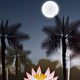 Landscape with Water, Palm Trees & Full Moon - GraphicRiver Item for Sale