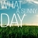 What a Sunny Day - AudioJungle Item for Sale