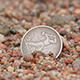 Coin in the Wet Sand 4 - VideoHive Item for Sale