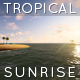 Tropical Sunrise - VideoHive Item for Sale