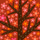 Trees Grow Animation Pack - VideoHive Item for Sale