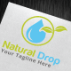 Natural Drop Logo Template - GraphicRiver Item for Sale