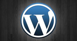 Great Wordpress Themes