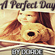 Photo Gallery A Perfect Day - VideoHive Item for Sale