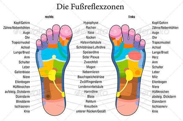 Foot reflexology chart german description by peterhermesfurian