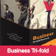 Business Tri-fold Brochure - GraphicRiver Item for Sale