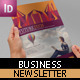 Picas Business Newsletter - GraphicRiver Item for Sale
