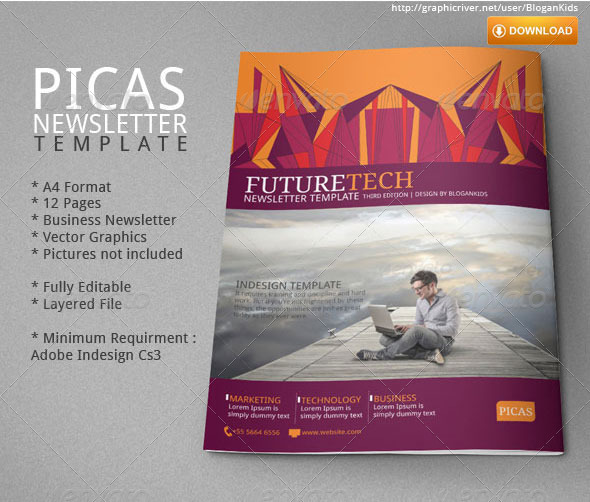 Picas Business Newsletter By Blogankids | Graphicriver