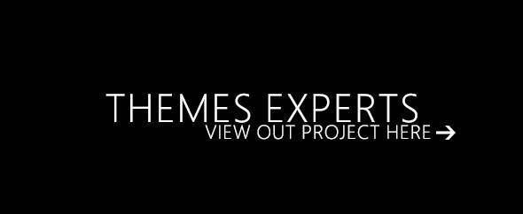 Themesexperts