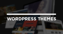Our WordPress Theme