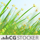 Grass Flowers Scene - VideoHive Item for Sale
