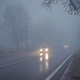 Road In The Fog 2 - VideoHive Item for Sale