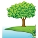 Tree near river - GraphicRiver Item for Sale
