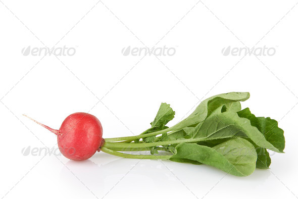 Small garden radish with leaves isolated - Stock Photo - Images