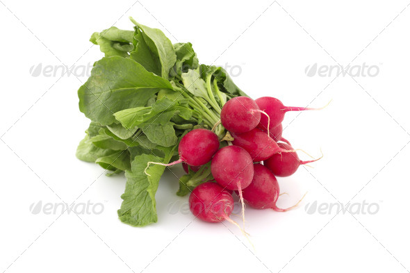 small bunch of radishes on white background - Stock Photo - Images