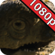 Jurassic Gardens: Black Lagoon Creature - VideoHive Item for Sale