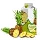Download Vector Pineapple Juice Pack