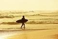Surfing - PhotoDune Item for Sale