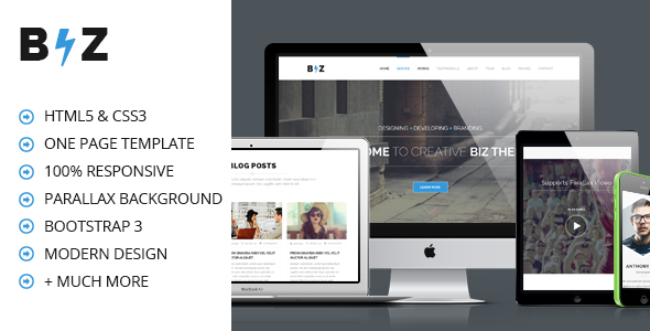 BIZ - One Page Parallax HTML Template by codexcoder | ThemeForest