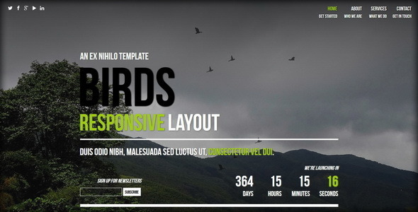 Birds || Responsive Coming Soon Page - Under Construction Specialty Pages