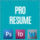 Simple CV Resume Set - GraphicRiver Item for Sale