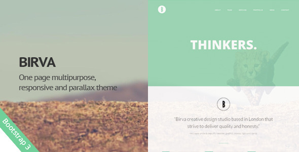 Birva -  Creative One Page Template - Portfolio Creative