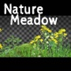 Nature Meadow - VideoHive Item for Sale