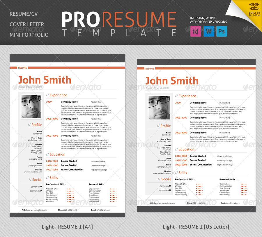 professional resume  cv by bilmaw