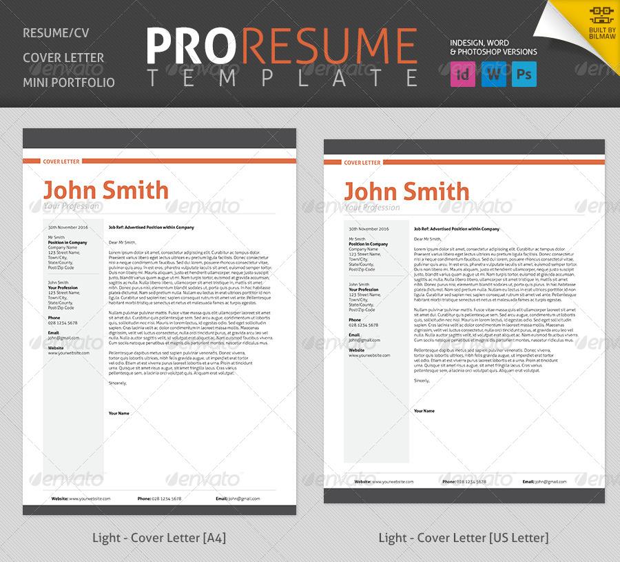 professional resume  cv by bilmaw
