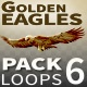Golden Eagles - VideoHive Item for Sale