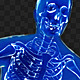 Human X-Ray - 10 Poses Pack - GraphicRiver Item for Sale