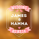 Wedding Titles Vol.2 - VideoHive Item for Sale