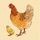 Chicken and Baby Chick - GraphicRiver Item for Sale