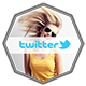 Twitter Header Photos - GraphicRiver Item for Sale