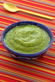 Delicious mexican guacamole dip - PhotoDune Item for Sale