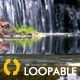 Cascade Waterfall - Full HD - Loop - VideoHive Item for Sale