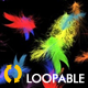 Rainbow Feathers -  Full HD Loop - VideoHive Item for Sale