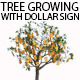 Tree Growing With Dollar Sign - VideoHive Item for Sale