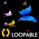Tropical Butterflies - Loop - VideoHive Item for Sale