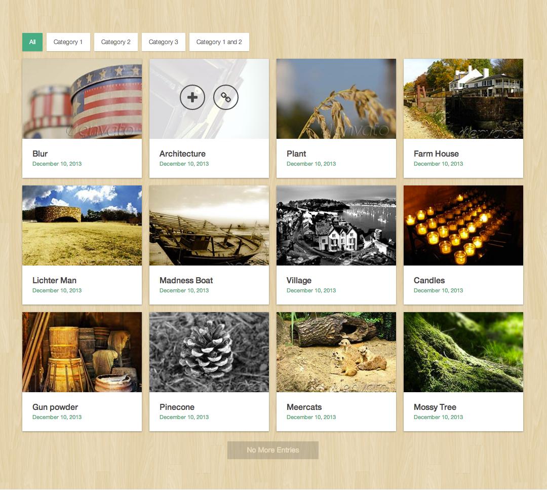 Media Boxes Portfolio - Responsive jQuery Grid Plugin