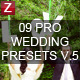 9 Pro Wedding Presets vol.5 - GraphicRiver Item for Sale