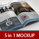 5 in 1 Bi-fold Brochure Mockup - GraphicRiver Item for Sale
