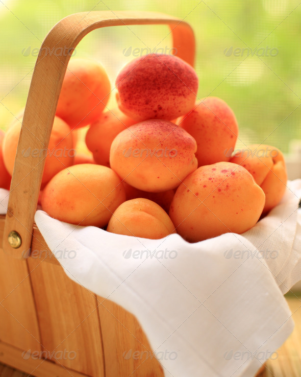 Basket with apricots - Stock Photo - Images