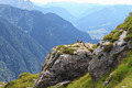 Marmots and Fassa Valley - PhotoDune Item for Sale