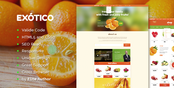 Exotico Responsive HTML Template - Food Retail
