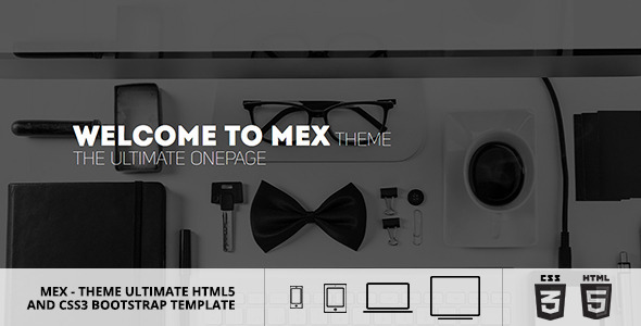 MEX Minimal Multipurpose Theme