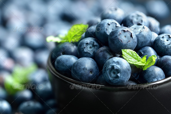 Blueberry - Stock Photo - Images