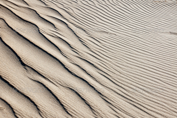 Background from a sand dune - Stock Photo - Images